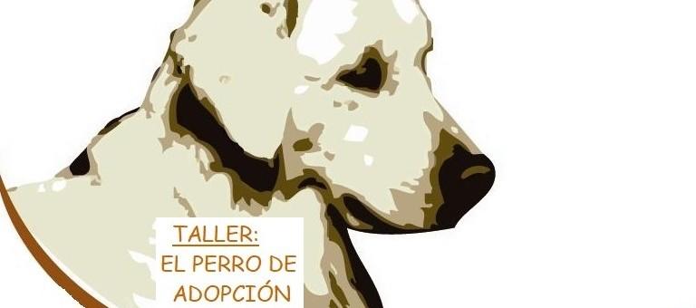 taller perros de adopción